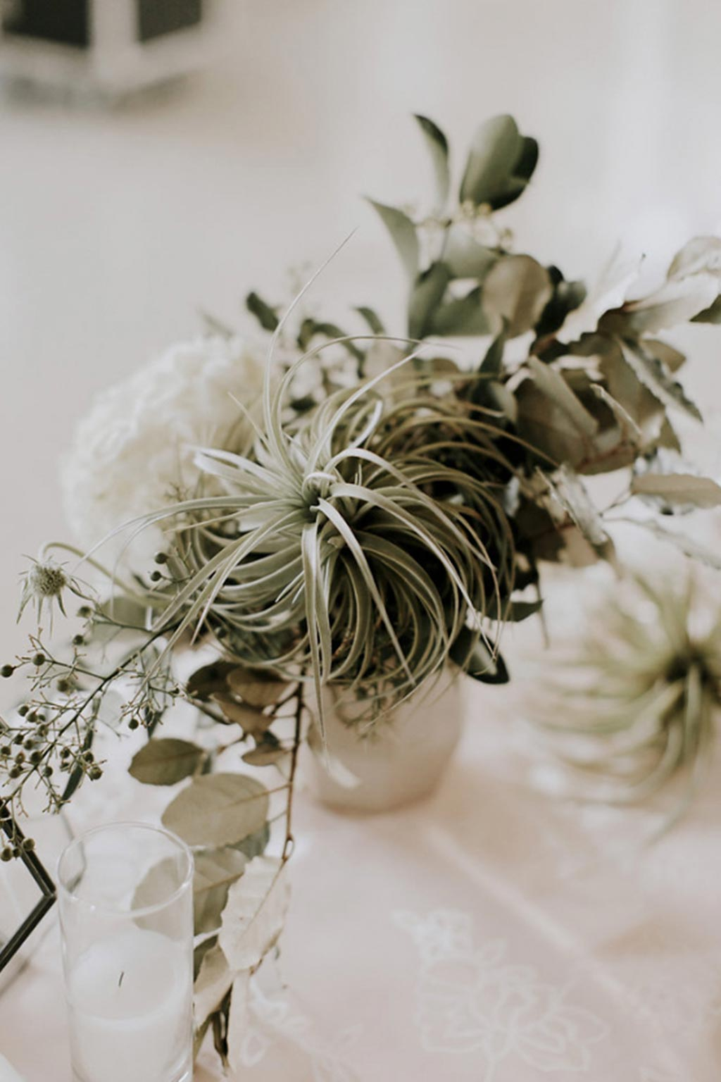 Air plant organic white and green wedding table centerpiece